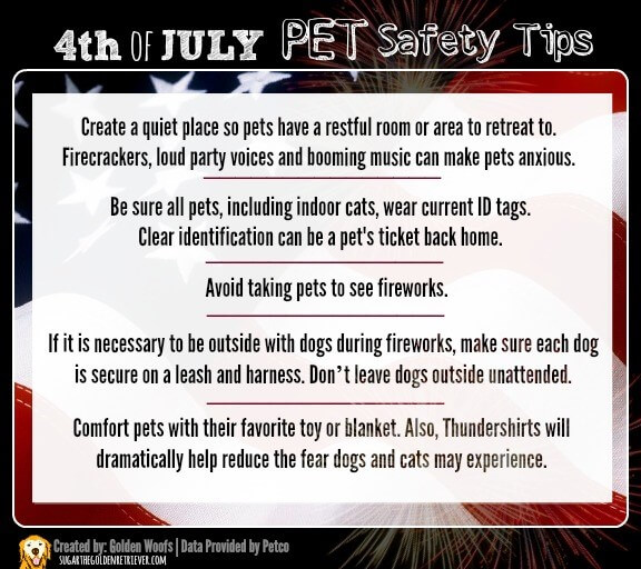 pet safety tips poster