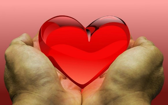 gell heart in palms of hands