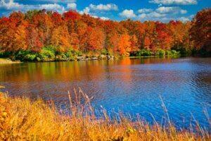 fall scenery at a lake